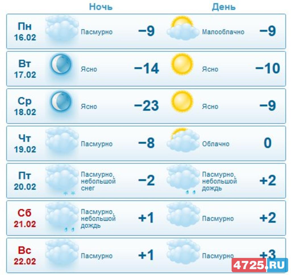 погода в шадринске прогноз клева